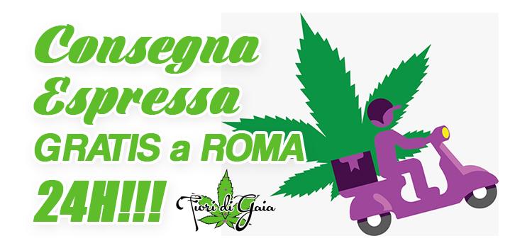 consegna espressa su roma