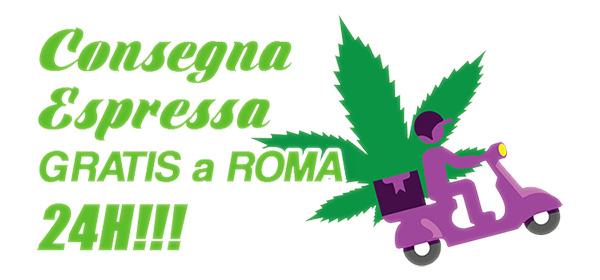 consegna espressa su roma cbd